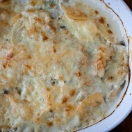 potato gratin | the merry gourmet
