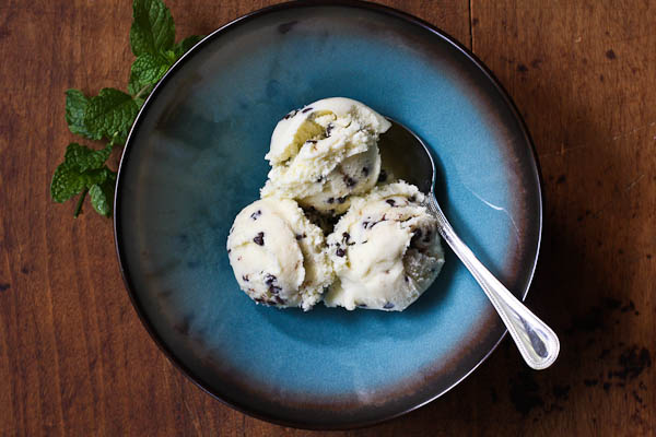 mint chocolate chip ice cream | the merry gourmet