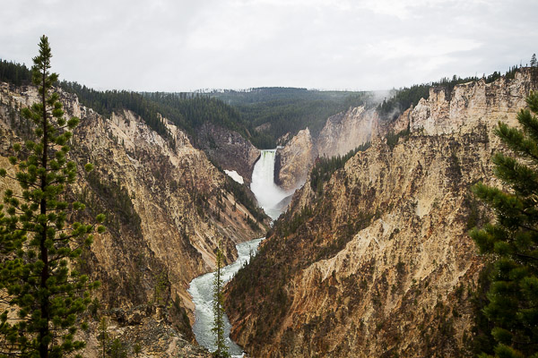 yellowstone national park | the merry gourmet